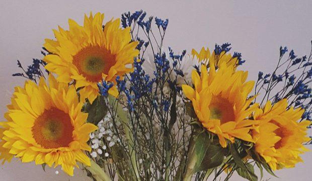 wp-sunflower.jpg